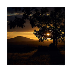 (david Ramalleira) Tags: davidramalleira davidramalleiraphotography sonya7iii sony24105f4 sunset atardecer hiendelaencina nature naturaleza natureart naturephotography naturesfinest naturesart paisaje landscape landscapes light luz tree árbol