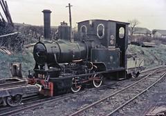0-4-0WT DOUGLAS at Towyn Pendre sidings (TrainsandTravel) Tags: wales cymru paysdegalles narrowgauge voieetroite schmalspurbahn steamtrains trainsavapeur dampfzug talyllynrailway 2ft3ingauge 686mm 040wt 6 douglas towynpendre
