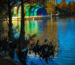Beautiful day at the lake... (eyedocal) Tags: florida water orlando lake birds lakeeola