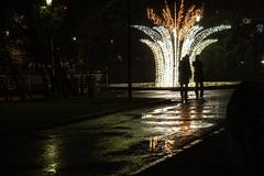 Õhtune Tallinn (Jaan Keinaste) Tags: pentax k3 pentaxk3 eesti estonia tallinn õhtu evening
