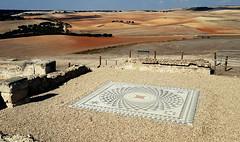Segobriga 5 (alvaro31416) Tags: segobriga arqueologia ruina romano mosaico cuenca