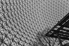 Inside the dome (Lionelcolomb) Tags: montréal québec canada dome biodome texture noirblanc noiretblanc bw blackwhite sphere architecture inside patern geometric indoor canon 1200d sigma apple imac adobe lightroom