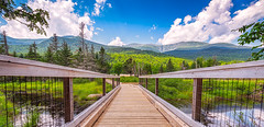 Hiking bridge in front of Mount Washington (mikewhalenphotography) Tags: mountain mountains hills nature landscape outdoors outside outdoor journey adventure active activity hike hiking walk walking trail path bridge fence railings walkway clouds sky sun sunlight summer warm perspective tree trees forest water reflection scenery scenic
