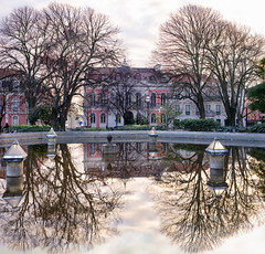 Prince in the mirror (Pietro Faccioli) Tags: lisbon portugal square garden cloudy reflection trees winter city street urban oldtown plant trunk downtown old park town plants pond lake fountain water mirror