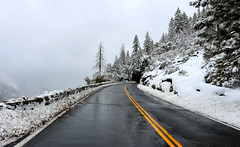 Winter (I Nair) Tags: winter snowing firstsnowing yosemite foggy yosemitenationalpark