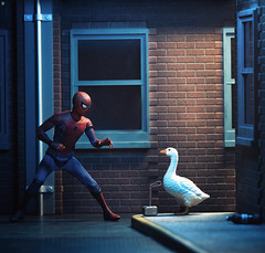 umm, hey goosey i'm going to need that hammer back (Jezbags) Tags: goose thor hammer marvel marvelstudios spiderman toy toys toyphotography canon canon80d 80d 100mm macro macrodreams untitledgoose theft thief