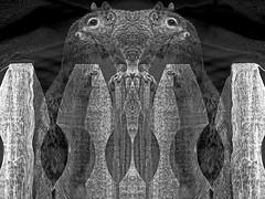In Perfect Balance (kfocean01) Tags: black bw animal awardtree art abstract artdigital wildlife shockofthenew squirrels faces blackandwhite photoshop photomanipulation p