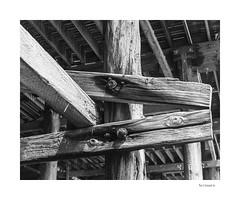Scissors (agianelo) Tags: pacific beach pier san diego piling wood monochrome bw bn blackkandwhite