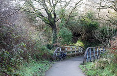 2020 Bike 180, Ride 5, 15th January. (Photopedaler) Tags: 2020bike180 cornishcycling bicycle wintercycling bridges coosebeangreenway cyclepath