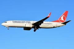 TC-JVC Boeing 737-8F2 Turkish Airlines (BRU/EBBR) (geoffrey.zdcki) Tags: bru brussels belgium brusselsairport bruxelles belgique spotting spotter nikon aviation avion landing ebbr boeing tk thy 738 tcjvc turkey turkishairlines turkish 7378f2
