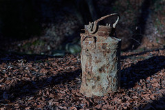 rusty (ivoräber) Tags: rusty steel forest wald rubbish disposal 40mm voigtlander