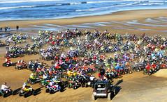 C'mon baby, do the loco-motion … (Le.Patou) Tags: challenge flickrfriday locomotion fz1000 sea seashore seaside beach sand ocean quad race racing