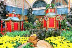 Red Lanterns (LotusMoon Photography) Tags: lantern celebration colorful festive annasheradon lotusmoonphotography sharingart