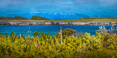 Guadeloupe - Petite Terre - Vu sur Terre de Haut et Desirade (François Leroy) Tags: françoisleroy france antilles guadeloupe petiteterre terredehaut terredebas desirade océan mer eau ciel ile plage vegetal