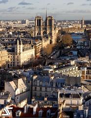 Cathédrale Notre-Dame (A.G. Photographe) Tags: ag agphotographe paris parisien parisian france french français europe capitale d850 nikon nikkor 70200vrii notredame cathédrale seine bateauxmouches