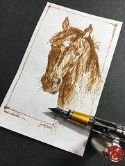 Lunch doodle (schunky_monkey) Tags: fountainpen penandink ink pen illustration art drawing draw sketches sketching sketch equine horsehead animal animalart horse