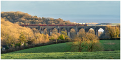 Winter light (Mark Gowing) Tags: 66158 porthkerryviaduct coaltraincrossingviaduct class66 freighttrain