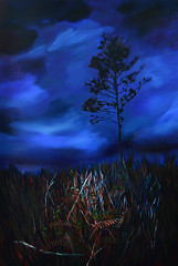 12:5:19 Night Run Painting (Shannon L. Castor) Tags: oilpainting painting night nature trees ferns