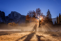 Frosty Morning Fog 'Bow in Yosemite Valley (Jeff Sullivan (www.JeffSullivanPhotography.com)) Tags: national sun ice fog rainbow rays pogonip california park copyright usa cold jeff nature canon reflections landscape photography photo valley yosemite sullivan november 2006