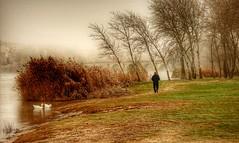 Niebla de invierno junto al Duero (carmengonzalez23mayo) Tags: zamora spain europe duero douro landscape river winter frog country cold