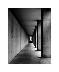 the ugliness of concrete (Armin Fuchs) Tags: arminfuchs lavillelaplusdangereuse würzburg alteuniversität university 6x7 niftyfifty concrete diagonal