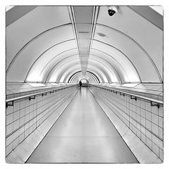 Bank Tube Station (Joseph Pearson Images) Tags: underground subway tube metro bank london vanishingpoint blackandwhite mono bw square
