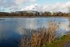 Bedfont Country Park-F1150338