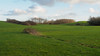 Bedfont Country Park-F1150343