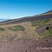 Monte Nero crater