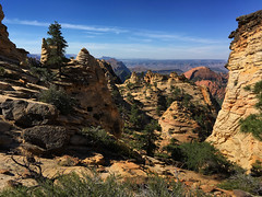Zion National Park, view from Red Butte area in the Kolob Terrace section towards east (swissuki) Tags: zion national naturepark mountainlandcsapelargelandscape sky utah ut