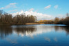 Bedfont Country Park-F1150320