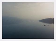 Swan-Lake (petergardiner7109) Tags: river lake swans mist desaturated artistic painterly morning light sunrise