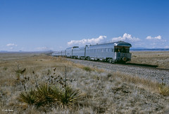 TTX Special Westbound (thechief500) Tags: atsf bnsf railroads ratonsubdivision colmor nm usa santaferailway newmexico