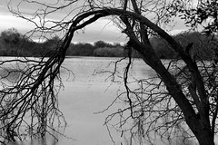 Gateway (_WilliamRichards_) Tags: nature grayscale blackandwhite lake