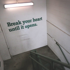 Day 15 : Break your heart until it opens (Randomographer) Tags: project365 366 365 typography black white letters type exposure lines contrast stairs heart break wall light florescent concrete 15 2020 viii stairway handrail steps