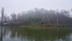 Lauterberg im Nebel (KaAuenwasser) Tags: lauterberg berg hügel baum bäume zoologischerstadtgarten stadtgarten karlsruhe see wasser nebel dunst reif frost eis winter