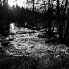 Pitäjänmäki (www.ilkkajukarainen.fi) Tags: mustavalkoinen monochrome blackandwhite nature luonto streets street photography fotography happy life line helsinki katu kadut kuvaus kuva valokuva suomi finland finlande eu europa sacndinavia pitäjänmäki puro joki river stream