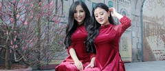 Spring is coming... (khoitran1957) Tags: girl woman women flower spring red people portrait aodai ultrawide wallpaper wide widescreen 219