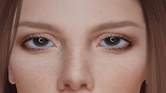 DEEP LEARNING ... (THIRTY EIGHT MMR GALLERY) Tags: ag influencer eyes pack