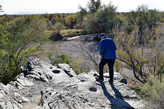 Ancient native grinding holes (~Patti~) Tags: foodchainisthetopicforwedjan152020 odc grindinghole quartzsite arizona 36620202020vision 366