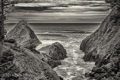 Haceta Head (Zane's Photography) Tags: coast leicam10p leicasummicron50mmf20v oregon rocks tree trees cliff waves pacific water clouds