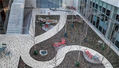 Courtyard Design Befitting A College Of Design? (ioensis) Tags: courtyard landscape samfoxschoolofdesign visualarts washingtonuniversity danforthcampus stlouis saintlouis missouri mo january 2020 jdl ioensis 01552007067tmf2001011b©johnlangholz2020 johnlangholz2020 01552007067tmf200101 weil weilhall