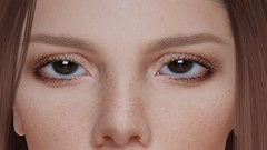DEEP LEARNING ... (THIRTY EIGHT MMR GALLERY) Tags: ag mirage eyes pack