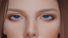 DEEP LEARNING ... (THIRTY EIGHT MMR GALLERY) Tags: ag night eyes pack