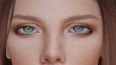 DEEP LEARNING ... (THIRTY EIGHT MMR GALLERY) Tags: ag transcendence eyes pack