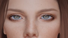 DEEP LEARNING ... (THIRTY EIGHT MMR GALLERY) Tags: eyes pack ag transcendence
