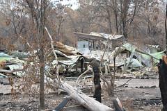 Sarsfield destruction 2020-3 (Peter_Mackey) Tags: bushfire australia victoria eastgippsland