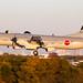 82-1155   NAMC YS-11EB   Japan - Air Self Defence Force (Vincent Vannier AéroSpot66) Tags: