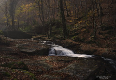 Breathe (Through_Urizen) Tags: category flora landscape mustafakemalpasa panorama places suuctuwaterfall turkey waterfall canon90d canon sigma1020mm autumn waterfalls cascade fall leaves sunlight autumncolours woodland forest stream river creek silkywater landscapephotography nature countryside rural