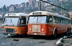 3447 SPECIAL (brossel 8260) Tags: belgique bus sncv namur